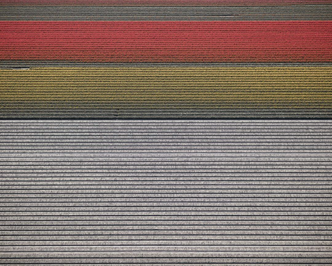 Mintsquare_selected_DB_VELD-14Noordoostpolder-Flevoland-The-Netherlands