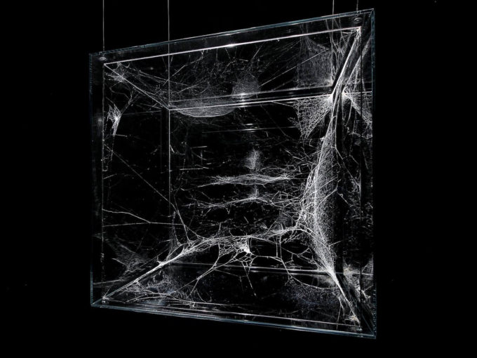 Mintsquare_selected_spider_art_Thomas Saraceno