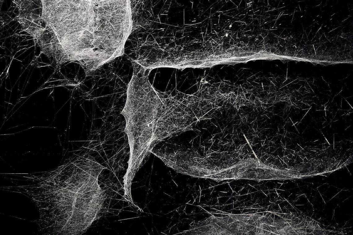 Mintsquare_selected_spider_art_Thomas Saraceno